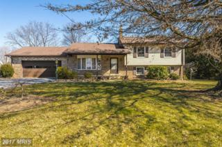 6501 Morningside Court, Middletown, MD 21769 (#FR9862701) :: Pearson Smith Realty