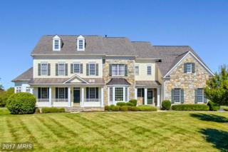 6802 Southridge Way, Middletown, MD 21769 (#FR9874509) :: LoCoMusings
