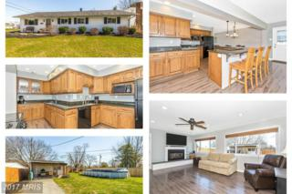 1417 12TH Street, Frederick, MD 21702 (#FR9882800) :: Pearson Smith Realty