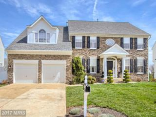 614 Hedgerow Court, Frederick, MD 21703 (#FR9887289) :: Pearson Smith Realty