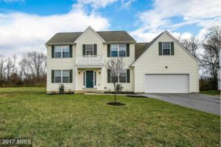 1028 Storrington Drive, Frederick, MD 21702 (#FR9900868) :: Pearson Smith Realty