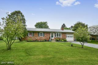 7810 Spout Spring Road, Frederick, MD 21702 (#FR9926317) :: Pearson Smith Realty