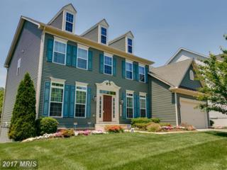 1313 Volunteer Drive, Brunswick, MD 21716 (#FR9931636) :: Pearson Smith Realty