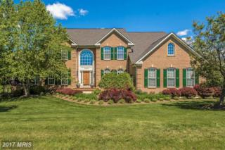11213 Angus Way, Woodsboro, MD 21798 (#FR9939559) :: Pearson Smith Realty