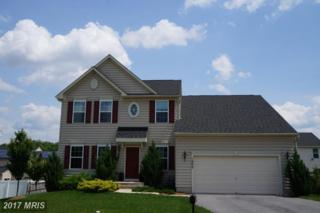 1902 Chamberlain Drive, Frederick, MD 21702 (#FR9952595) :: Pearson Smith Realty