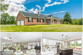 11868 Angleberger Road, Thurmont, MD 21788 (#FR9958407) :: Pearson Smith Realty
