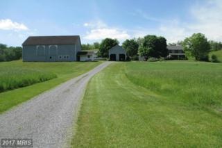 7191 Great Cove Road, Needmore, PA 17238 (#FU8644968) :: Pearson Smith Realty