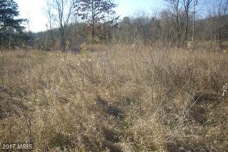 445 Longview, Mcconnellsburg, PA 17233 (#FU9829557) :: Pearson Smith Realty