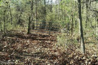 Mill Hill Road, Warfordsburg, PA 17267 (#FU9837455) :: Pearson Smith Realty