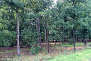 Hunting Ridge Road, Winchester, VA 22603 (#FV9583744) :: LoCoMusings