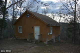 301 Smelter Lane, Winchester, VA 22602 (#FV9664174) :: Pearson Smith Realty