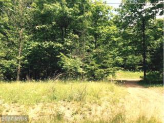 Estate Dr. Drive, Winchester, VA 22603 (#FV9699655) :: Pearson Smith Realty