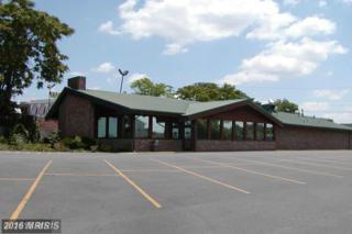 131 Town Run Lane, Stephens City, VA 22655 (#FV9741404) :: Pearson Smith Realty