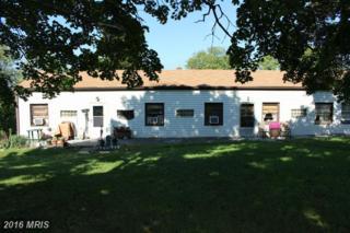 367 Summit Avenue, Front Royal, VA 22630 (#FV9780125) :: Pearson Smith Realty
