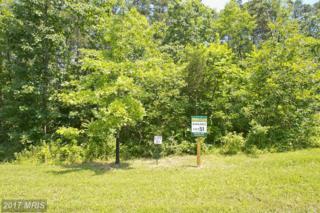 51 Wayside Mill Lane, Middletown, VA 22645 (#FV9806679) :: LoCoMusings