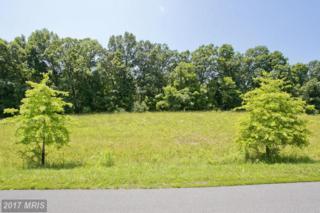 12 Wayside Mill Lane, Middletown, VA 22645 (#FV9806680) :: LoCoMusings