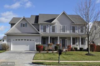 113 Lipizzaner Court, Stephens City, VA 22655 (#FV9814466) :: Pearson Smith Realty