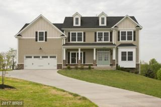 Not On File, Winchester, VA 22602 (#FV9828714) :: Pearson Smith Realty
