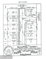 130 Kinross Drive, Winchester, VA 22602 (#FV9828739) :: Pearson Smith Realty