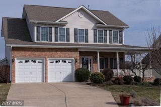 105 Van Gogh Terrace, Winchester, VA 22602 (#FV9847551) :: LoCoMusings
