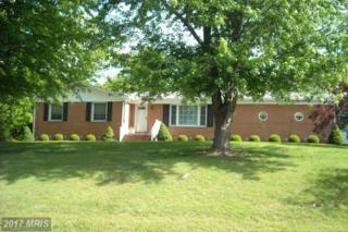 203 Laurel Hill Drive, Stephens City, VA 22655 (#FV9879690) :: Pearson Smith Realty