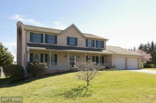 234 Brandylion Drive, Stephens City, VA 22655 (#FV9879894) :: LoCoMusings