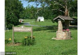 LOT 334 Archwood Trail, Winchester, VA 22602 (#FV9886271) :: LoCoMusings