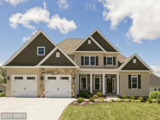 209 Taggart Drive, Winchester, VA 22602 (#FV9909757) :: Pearson Smith Realty