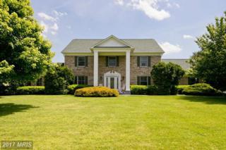 896 Old Bethel Church Road, Winchester, VA 22603 (#FV9928615) :: Pearson Smith Realty