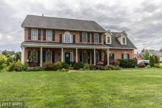 100 Tilford Drive, Winchester, VA 22602 (#FV9956601) :: Pearson Smith Realty