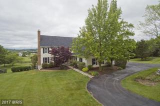 660 Germany Road, Stephens City, VA 22655 (#FV9957903) :: Pearson Smith Realty