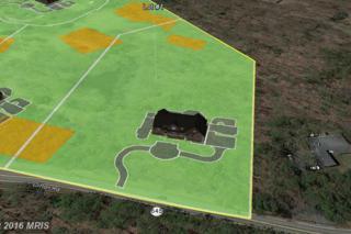 7300-LOT 1 Clifton Road, Clifton, VA 20124 (#FX9578110) :: Pearson Smith Realty