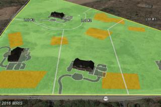 7300-LOT 2 Clifton Road, Clifton, VA 20124 (#FX9578135) :: Pearson Smith Realty