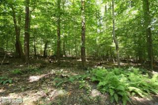11215 West Montpelier Road W, Great Falls, VA 22066 (#FX9614866) :: Pearson Smith Realty