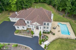 13200 Springdale Estates Road, Clifton, VA 20124 (#FX9676886) :: Pearson Smith Realty