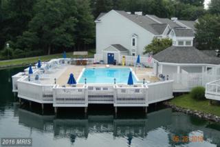 3406 Lakeside View Drive 13-1, Falls Church, VA 22041 (#FX9745093) :: Pearson Smith Realty