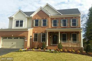 2553 Ogden Street #6, Falls Church, VA 22043 (#FX9770600) :: Pearson Smith Realty