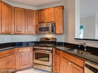 12000 Market Street #359, Reston, VA 20190 (#FX9815129) :: Pearson Smith Realty