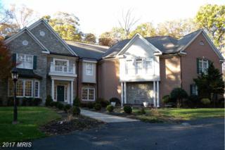 12329 Henderson Road, Clifton, VA 20124 (#FX9816484) :: Pearson Smith Realty