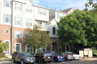 5945-C Terrapin Place #303, Alexandria, VA 22310 (#FX9819647) :: Pearson Smith Realty