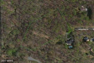 11816 Winterway Lane, Fairfax Station, VA 22039 (#FX9823277) :: Pearson Smith Realty