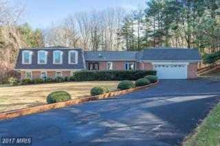 1209 Trotting Horse Lane, Great Falls, VA 22066 (#FX9829789) :: LoCoMusings