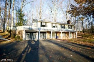 11600 Blue Ridge Lane, Great Falls, VA 22066 (#FX9830470) :: Pearson Smith Realty