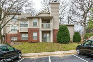 1700-D Ascot Way D, Reston, VA 20190 (#FX9832132) :: Pearson Smith Realty