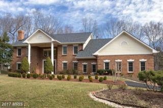 2603 Hannah Farm Court, Oakton, VA 22124 (#FX9834571) :: Pearson Smith Realty