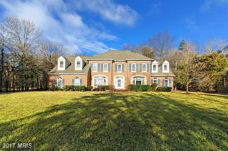 5270 Chandley Farm Circle, Centreville, VA 20120 (#FX9846771) :: Pearson Smith Realty