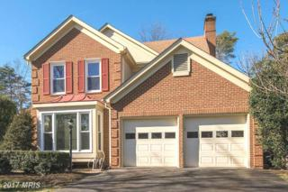 5202 Braywood Drive, Centreville, VA 20120 (#FX9852228) :: Pearson Smith Realty