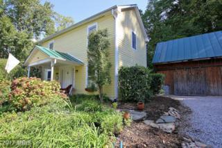 12717 Chestnut Street, Clifton, VA 20124 (#FX9862708) :: Pearson Smith Realty