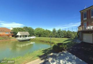 6501 River Tweed Lane, Alexandria, VA 22312 (#FX9864087) :: Pearson Smith Realty