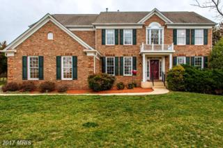 6503 Fawn Hollow Place, Centreville, VA 20120 (#FX9873178) :: LoCoMusings